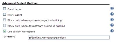 Jenkins Advanced Project Options of The Job