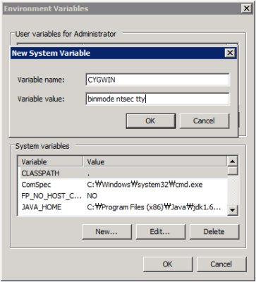Cygwin - Environment Variable