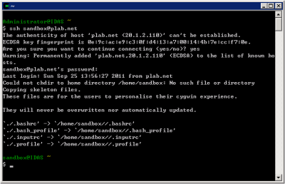 Cygwin SSH Connection Test