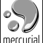 Mercurial tip - 인증 정보 저장하기
